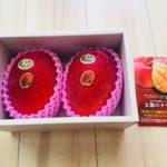 <ふるさと納税>宮崎県西都産完熟マンゴー「太陽のタマゴ」